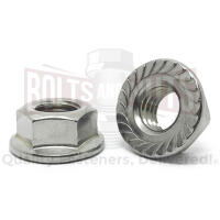 "1/4""-20 Stainless Steel Serrated Hex Flange Lock Nuts"