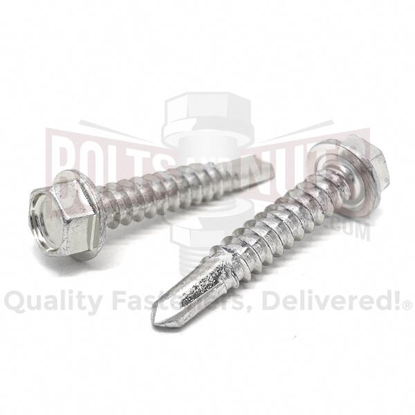 Stainless Hex Washer Head