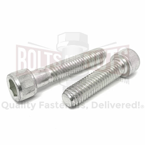 Stainless Socket Cap Screws